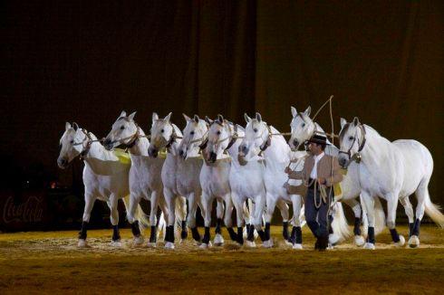 Espectáculo ecuestre en SICAB (Salón Internacional del Caballo).